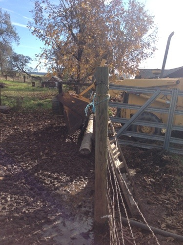 And added those pole around the bottom of the pen so Char couldn't slip under the fence.
