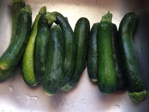 Pete's garden zucchini